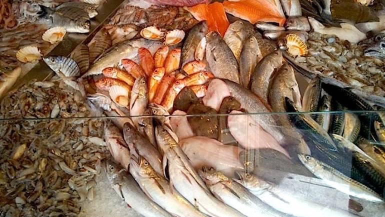 Ciampino. Migliora la qualità del pesce in vendita presso i mercati giornalieri e settimanali dopo i controlli di Capitaneria di porto e Polizia Locale.