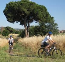 Controlli sul tratto urbano di Via Appia Antica