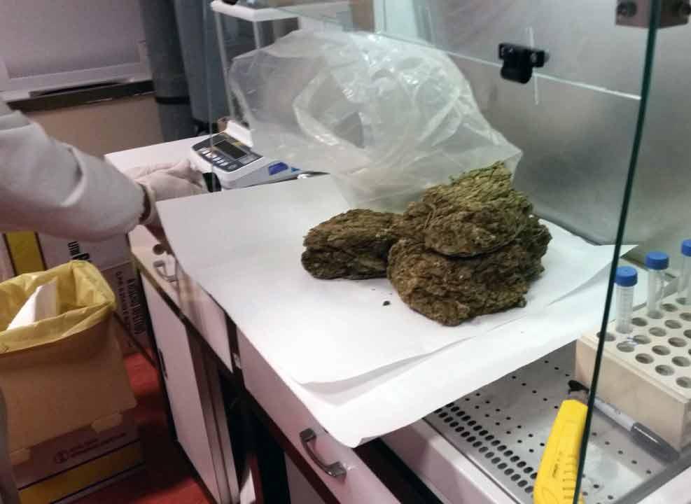 Ciampino. Guardia di Finanza e Polizia Locale sequestrano 1,3 Kg di droga tra marijuana e hashish